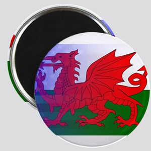 Wales Dragon Stars and Stripes Magnets