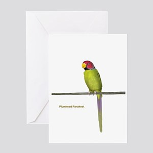 Plumhead Parakeet Greeting Card