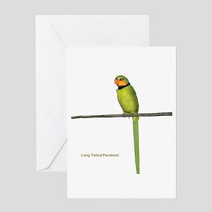 Ring Necked Parakeet Greeting Card