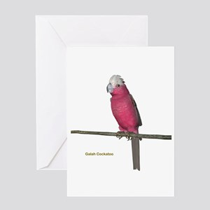 Galah Cockatoo Greeting Card