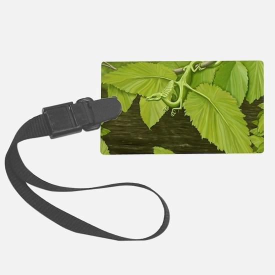 Earth Leaf Dragon Luggage Tag