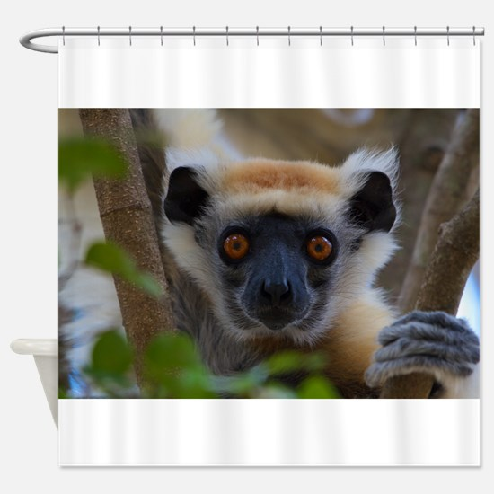 AASB Cards 237 Shower Curtain
