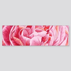 Elegant Pink Peony Flowers Closeup Bumper Sticker