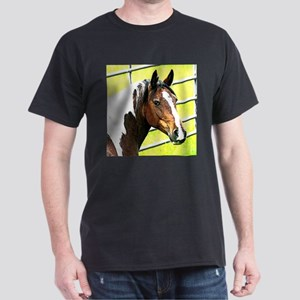 Horse in sun T-Shirt