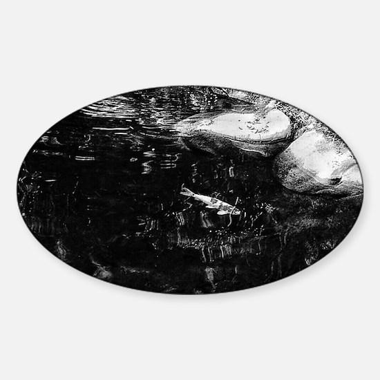 Reflecting Pond (Black & White) Decal