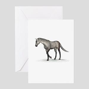 Horse (Dapple) Greeting Card