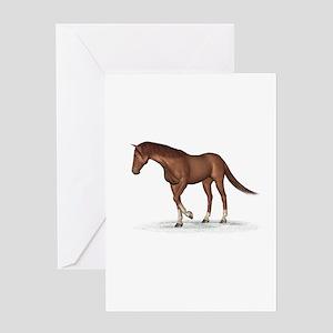 Horse (Chestnut) Greeting Card