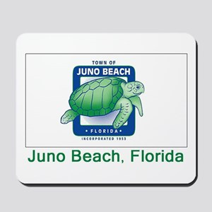 Juno Beach FL Flag Mousepad
