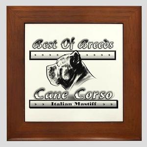 Cane Corso BW Framed Tile