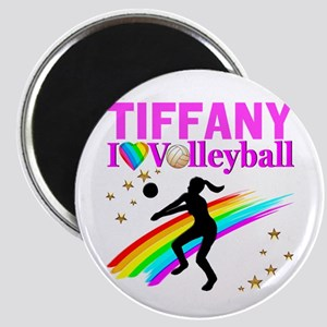CUSTOM VOLLEYBALL Magnet