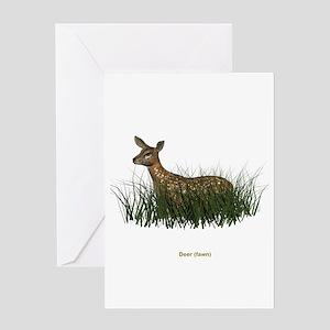 Deer (Fawn) Greeting Card
