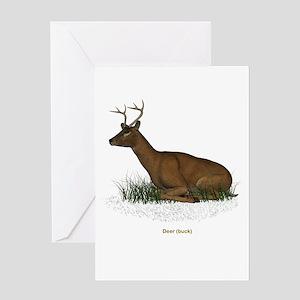 Deer (Buck) Greeting Card