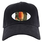 Hard Edged Shape Black Cap