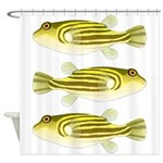 Nile Puffer fish Shower Curtain