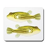 Nile Puffer fish Mousepad