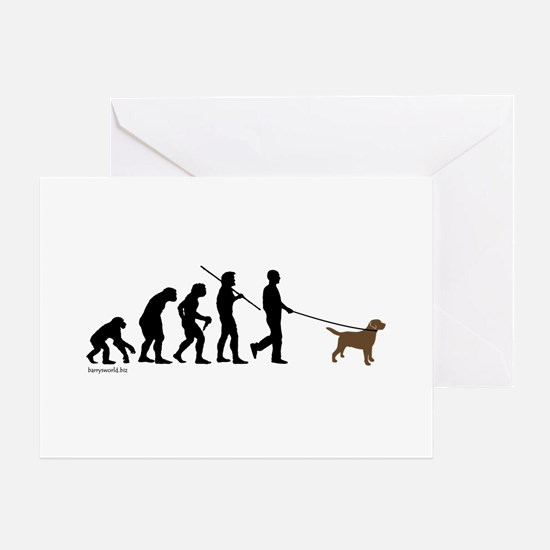 Chocolate Lab Evolution Greeting Cards