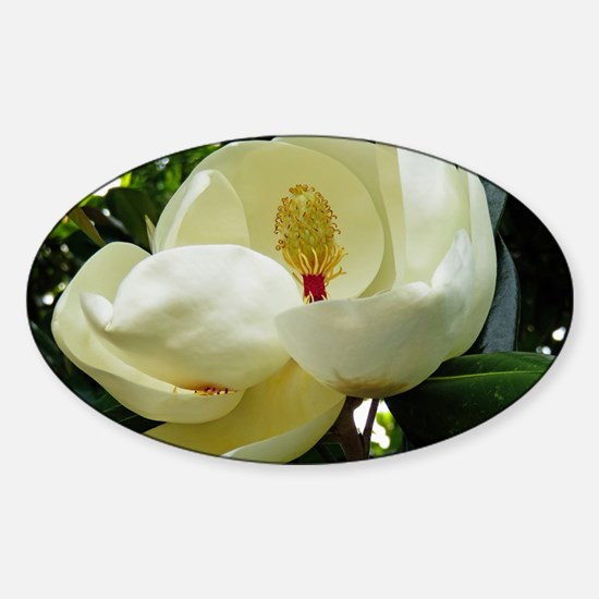 Cool Floral and botanical Sticker (Oval)