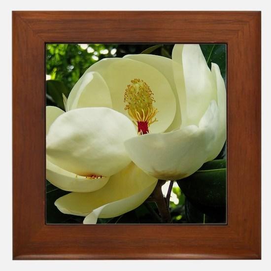 Cute Magnolia Framed Tile