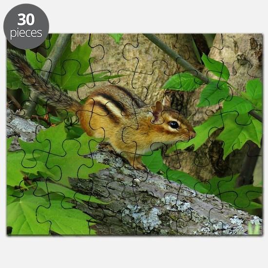 Roaming chipmunk Puzzle