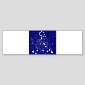 Constelation of Pisces Bumper Sticker