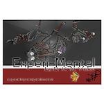 Experi-Mental Book Cover Large Poster