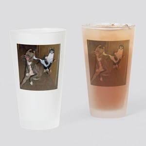 Funny Kung Fu Kitty Drinking Glass