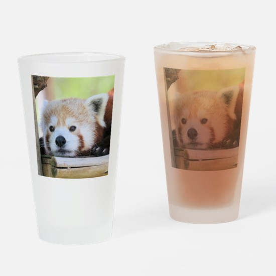 Unique Red panda Drinking Glass