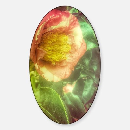 Cute Rainbow bouquet Sticker (Oval)