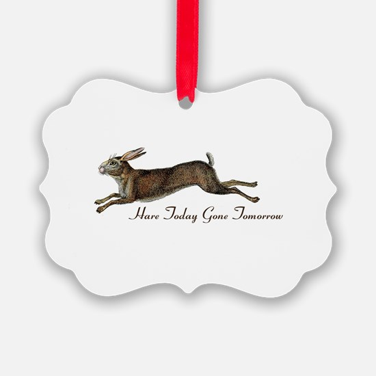 Hare Today Ornament