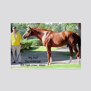 "SECRETARIAT ""Big Red"" Magnets"