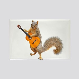 Squirrel Acoustic Guitar Magnets