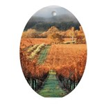 Olivina Ranch in Winter - Oval Ornament