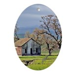The Vallecitos House - Oval Ornament