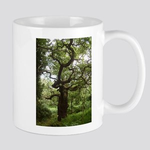 Real Fairy Tree In Sherwood Forest Mugs
