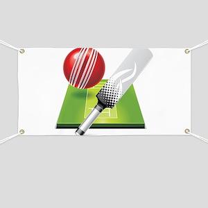 Cricket pitch bat ball Banner