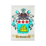 Tevelin Rectangle Magnet (100 pack)
