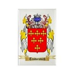 Teodorovich Rectangle Magnet (100 pack)