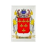 Teodorovic Rectangle Magnet (100 pack)