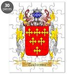 Teodorovic Puzzle