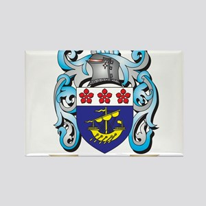 Davidsohn Coat of Arms - Family Crest Magnets