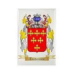 Teodorescu Rectangle Magnet (10 pack)