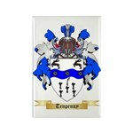 Tenpenny Rectangle Magnet (10 pack)