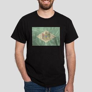 Silk Flag of Delaware T-Shirt