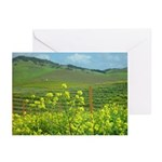Napa Valley + Wine Country Greeting Cards Greeting