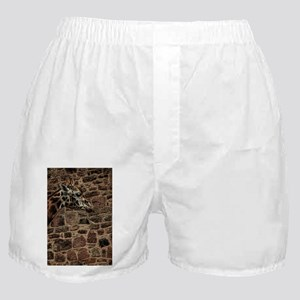 Amazing Optical Illusion Of A Giraffe Boxer Shorts
