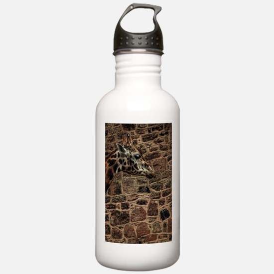 Amazing Optical Illusi Water Bottle