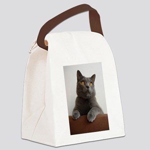 chartreux peeking Canvas Lunch Bag