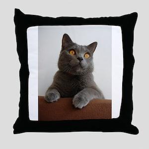 chartreux peeking Throw Pillow