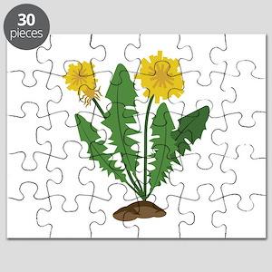 Dandelions Puzzle