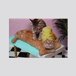 Funny Cat Massage Magnets